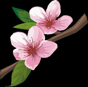 Sakura1003